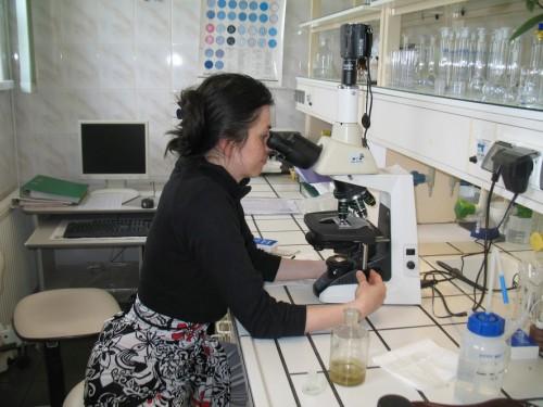 foto do prac mikrobiologi