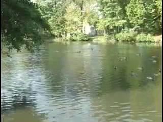 zielonogorskie wodociagi i kanalizacja 50 lat w sluzbie miasta 128